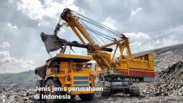 Jenis jenis perusahaan di Indonesia